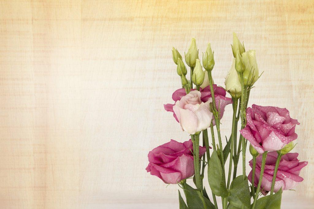 pink-lisianthus-flower