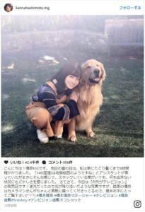 橋本環奈と犬2