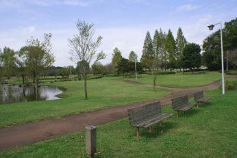 きぬ総合公園