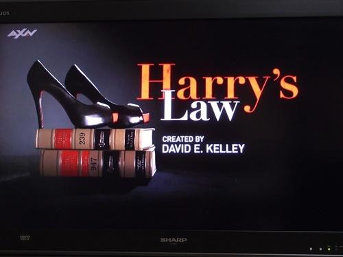ハリーズ・ロー裏通り法律事務所