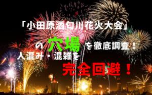 アイキャッチ小田原酒匂川花火大会