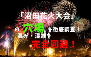 沼田花火大会アイキャッチ