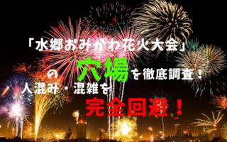 水郷おみがわ花火大会アイキャッチ