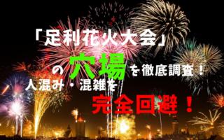 アイキャッチ足利花火大会