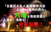 アイキャッチ全国花火名人選抜競技大会ふくろい遠州の花火